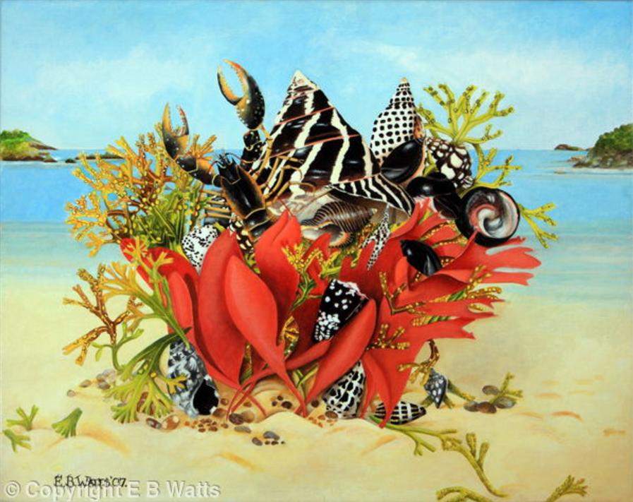 Shells In Seaweed Basket