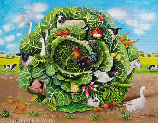 Farmyard Cabbage Jigsaw Puzzle © EBWatts