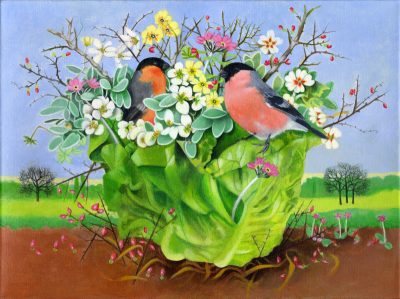 Bullfinches in a Lettuce Acrylic Painting by EB Watts