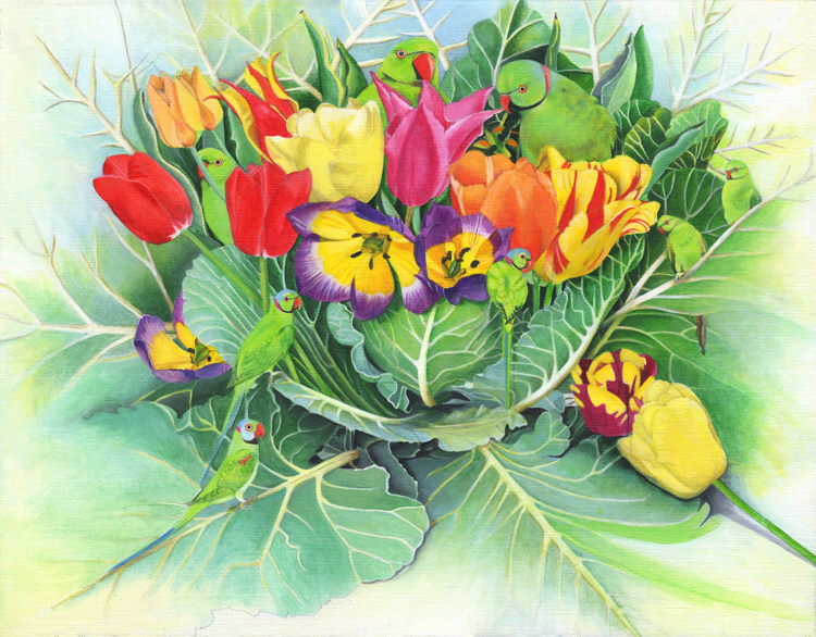 Tulips in Cabbage